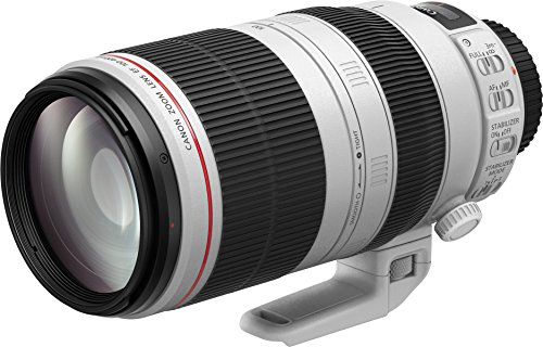 Canon EF 100-400mm IS II USM - Objetivo para Canon (100-400 mm, f/4.5-5.6L, IS II USM), color blanco
