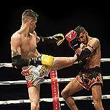 RDX Boxhandschuhe Sparring Rindsleder Training Kickboxhandschuhe Muay thai Sandsackhandschuhe, Rot, Gr. 12 oz - 5