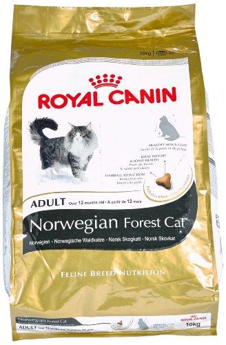 Preisvergleich Produktbild ROYAL CANIN Katzenfutter Norwegische Waldkatze 10 kg,  1er Pack (1 x 10 kg)