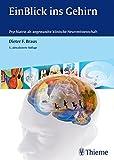 EinBlick ins Gehirn: Psychiatrie als angewandte klinische Neurowissenschaft