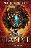 Drachenflamme: Roman (Feuerreiter-Serie 6)
