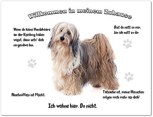 Merchandise for Fans Blechschild/Warnschild/Türschild - Aluminium - 15x20cm - - Willkommen in Meinem Zuhause - Motiv: Tibet Terrier weiß/braun- 02