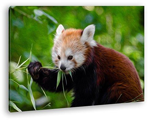 goldiger Roter Panda Effekt: Zeichnung Format: 120x80 als Leinwandbild, Motiv fertig gerahmt auf Echtholzrahmen, Hochwertiger Digitaldruck mit Rahmen, Kein Poster oder Plakat - Insel Bambus-rahmen