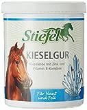 Botas diatomita 1kg con Kiesel Tierra + Zinc + Vitamina B complejo para caballos y isländer en piel y piel problemas | Kiesel Tierra