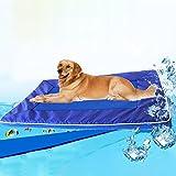 Your only brother Haustier Schöne ziemlich schöne Mode bequem Sommer Hundekissen Bed House Pet Cool Down Pad Abnehmbare Hundematte Kissen, groß, Größe: 73 * 46 * 4cm Bequem