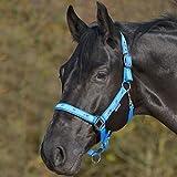 WALDHAUSEN Halfter Pferdemotiv