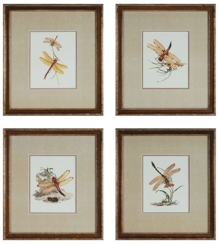 Sterling 10035-S4 Decorative Wall Art, Dragonflies, Set of 4
