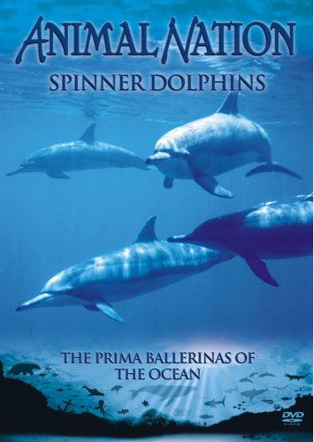 animal-nation-spinner-dolphins-dvd