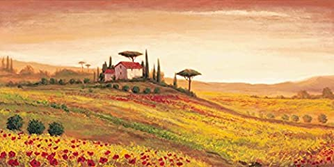 Poster Art Print On Quality Paper Artland Landscapes Italy A, S.: Tuscan Landscape with Poppy Size: 50 x 100 cm Large Selection in Our Dealer Shop!