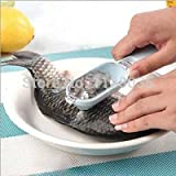 Fish Scaler - Best Reviews Guide
