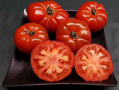 RWS 10 semillas de tomate RAF, de tomate de la herencia española, tomates recién importados