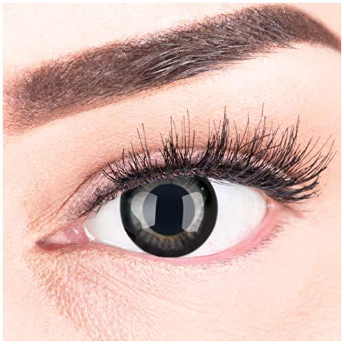 Meralens Circle Lenses Natural Ring ohne Stärke + 60ml Kombilösung + Behälter 14mm Big Eyes farbige Kontaktlinsen