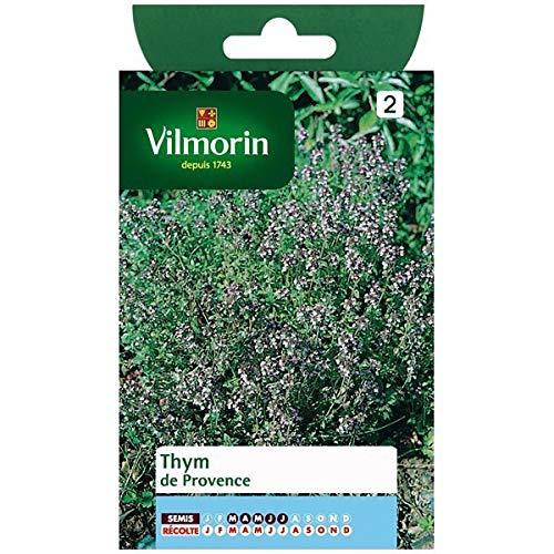 Vilmorin - Sachet graines Thym de Provence