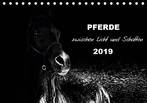 Pferde zwischen Licht und Schatten (Tischkalender 2019 DIN A5 quer): Pferde vor schwarzem Hintergrund eindrucksvoll mit Licht in schwarzweiß dargestellt (Monatskalender, 14 Seiten ) (CALVENDO Tiere) - Fine-art-tier-artwork
