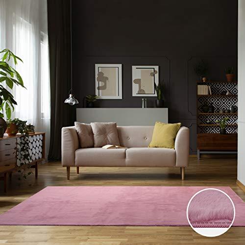 Carpet Studio Alfombra Suave al Tacto 160x230cm, para Salón/Cocina/Dormitorio/Pasillo, Decoracion Habitacion...