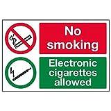 """Vsafety 57044ba-r""""Interdiction de fumer/cigarettes électroniques Autorisé"""" Interdiction des Signes, rigide Plastique, paysage, 300mm x 200mm, Noir/vert/rouge"""