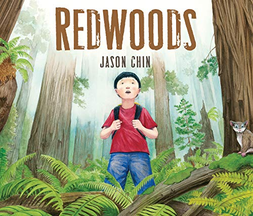 Redwoods por Jason Chin