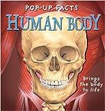 Pop-up Facts: Human Body (Pop-up Facts) (Pop-up Facts)