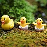 Hogar Y Jardin Best Deals - Welecom 30estilos figura decorativa Craft adorno de maceta en miniatura jardín de hadas decoración del hogar al aire libre Decor, 2 pcs ducks