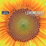 Songtexte von Lemongrass - Fleur Solaire