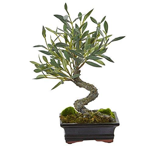 Fast natur mini olive Künstliche Bonsai Baum