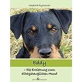 Eddy: Die Erziehung zum alltagstauglichen Hund