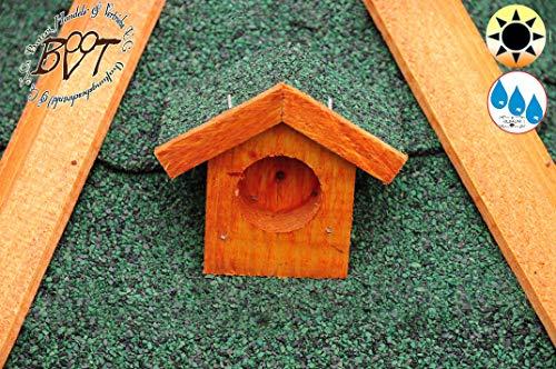 Vogelhaus mit Landebahn und Bitumendach - 5