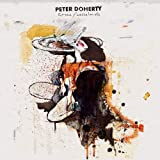 Grace/Wastelands by Pete Doherty -