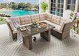 Destiny Loungegruppe Palma Riviera XL Vintage Braun Lounge Garnitur Dininglounge
