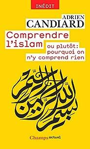 Comprendre l'islam: ou plutôt : pourquoi on n'y compr