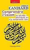 Comprendre l'islam: ou plutôt : pourquoi on n'y comprend rien (Champs actuel)