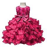 Dintang Kid Blumenmädchen Baby Prinzessin Party Abend Hochzeit Brautjungfer überlagert Tutu Kleid