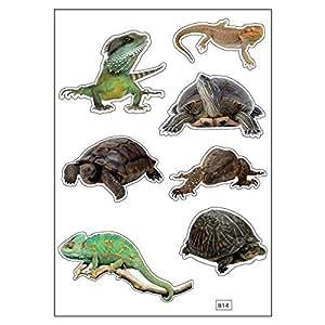Planche A4 de stickers reptiles autocollant adhésif scrapbooking - B14