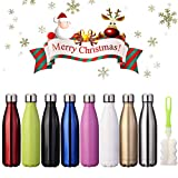 KING DO WAY Insulated Stainless Steel Water Vacuum Bottle Flask Double-walled with a Brush for Outdoor Sports Hiking Running , 500ml/18 oz Blue