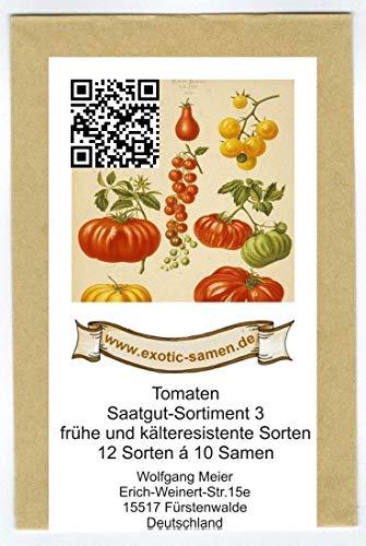 Samen - Saatgutsortiment - Set - Mix - Mischung - frühe und kältetolerante Tomatensorten - 12 Sorten á 10 Samen