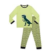 Boys T Rex Cotton Boys Kids Dinosaur Long Pyjamas