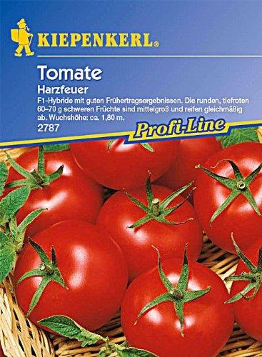 tomaten-harzfeuer-f11-portion
