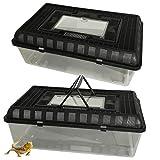 Heritage Tr-420Grande boîte d'élevage pour reptiles, insectes, tortue Vivarium Terrarium Faunarium