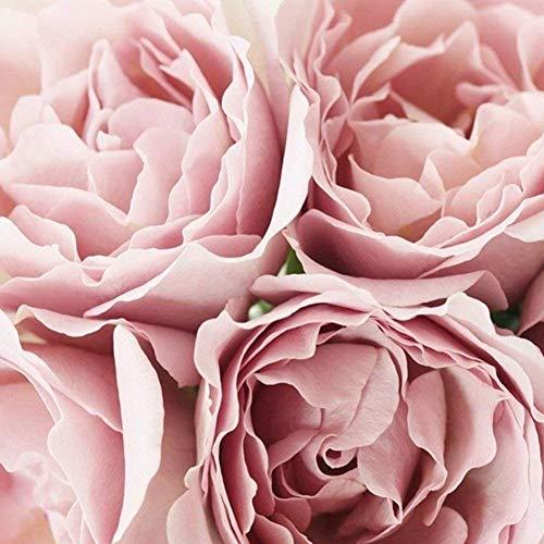 Realistische Rose Mauspad Ersatz rosa Blumen Mousepad Dauerhaftes Blüten Blumen Mausunterlage für Notebook Desktop Computer Rosa Bürobedarf