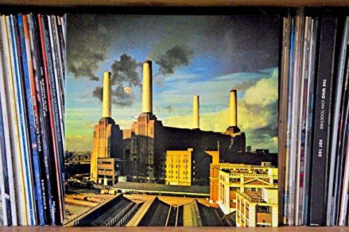 Pink Floyd eine 45,7x 30,5cm Fotografieren Hochwertiger Fotodruck von Rock Band Pink Floyd Animals Album Cover Landschaft Foto Farbe Fine Art Bild Print. Fotografie von Andy Evans Fotos (Britische Rock-bands)