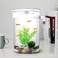 Selbstreinigendes Mini-Aquarium-Set von Bayrick + LED-Lampe Gravity Clean