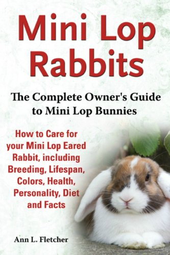 Mini Lop Rabbits: The Complete Owner