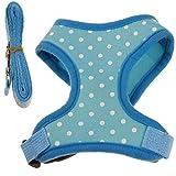 Hmeng Hundehalsband Set, Hunde Katze Welpen Ein Satz I-typ Fashion Walk out Weste Zugseil Halsband für Hund (S, Blau)