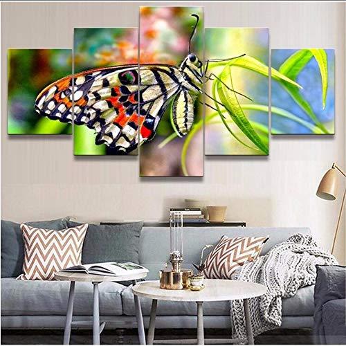 Pmhhc Kunstwerk Poster Leinwand Malerei 5 Stücke Schmetterling Hd Druckt Tierdekoration Wohnzimmer Wandkunst Blume Modular Bilder-10X15Cmx2 10X20Cmx2 10X25Cm