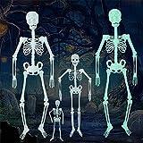 Ankamal Elec Halloween-Dekoration, Halloween 35cm hängendes menschliches Skelett, Halloween-Zubehör