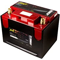 Stinger SPP1300C 1300 Amp SPP Series Dry Cell Battery with Protective Steel Case - ukpricecomparsion.eu