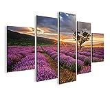 islandburner Bild Bilder auf Leinwand Lavendel Busch Büsche V2 MF XXL Poster Leinwandbild Wandbild Dekoartikel Wohnzimmer Marke