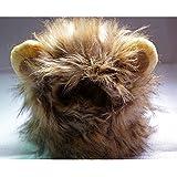 PUERI Criniere Lion pour Chat Petit Chien Tour de Tete Environ 26-30CM
