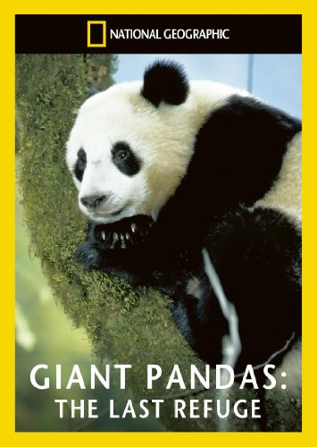 national-geographic-giant-pandas-the-last-refuge-dvd