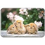 Violetpos Fußmatte Braun Kaninchen 3 Fußmatten Mat für Innen & Außen 45 x 75 cm